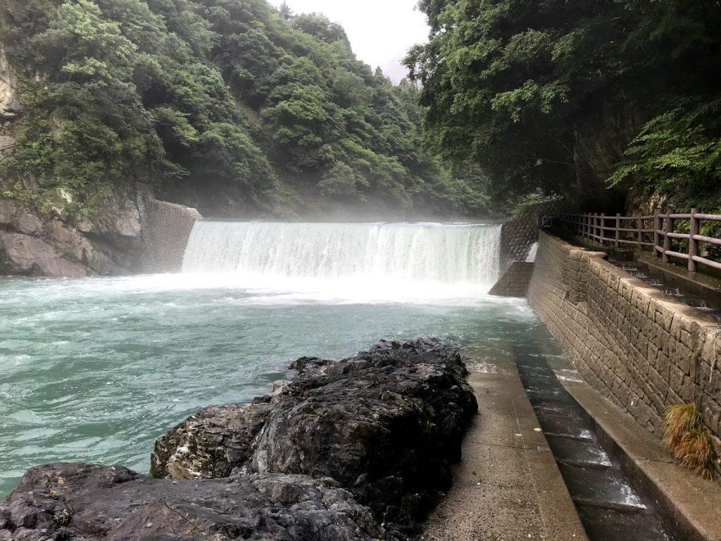 2020.7.19根尾川3